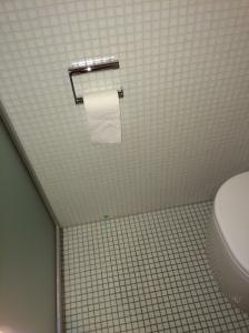 Fundstelle im Bad am WC - November 2014 - nach außen nichts zu sehen, aber eindeutiger Schimmelherd